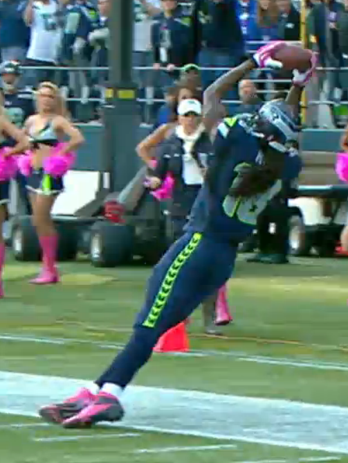Sidney Rice Catch
