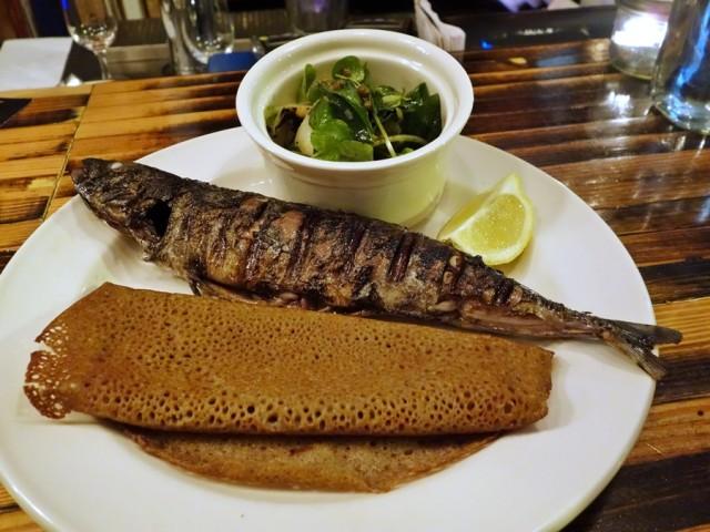 Lawrence mackerel